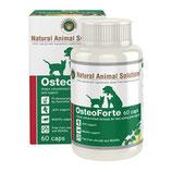 OsteoForte (60 caps)