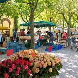 Fotoklotz Wiehremarkt