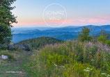 Postkarte SW-Panorama Blauen