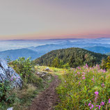 Fotoklotz Panorama Blauen