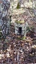 Arbol camuflage para trailcam