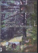 Pfynwald - das Herz des Naturparks