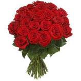 Rote Roses