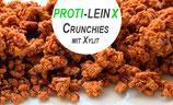 PROTI-LEIN  mit Xylit  - Diabetiker geeignet - 100 g