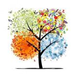 """Blumen Abo (A1) """"4-Jahreszeiten"""""""