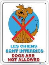 Chiens interdits Français / Anglais