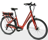 Flanders e-bike STePS Cruiser Premium