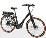 Flanders e-bike STePS Comfort Premium