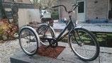 Eco-Trike
