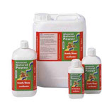 Advanced Hydroponics Excellerator Growth\Bloom