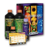 ATA Bloombastic Box Terra