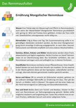 Ernährungsbausteine und Mischverhältnis Infoflyer