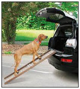 swisspet Auto Hunderampe Boarding