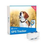 Tractive GPS Tracker LTE Hund, weiss