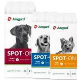 Amigard Spot on für Hunde