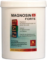 MAGNOSIN FORTE