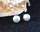 XL Süsswasser Zuchtperlen Ohrstecker - XL Freshwater pearl stud earrings