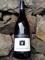 Weingut Burggarten 2016er Frühburgunder trocken