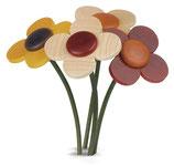 Blume, einzeln