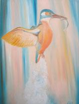 Eisvogel  Nr.20