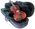 Violin Raggetti RV2 -includes Bow Case Violin and Setup