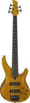 TRBX605 FM 5-string Bass Guitar AVAILABLE TO ORDER