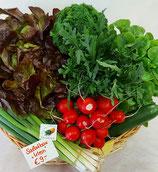 Salatbox Jacobsen - in 2 Größen