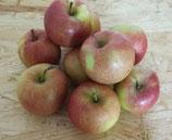 Äpfel süsslich kg