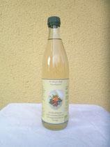 Bio-Hollerblüten-Zitronenmelissen-Orangenminzensirup