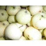 Bio-Klaräpfel 1kg