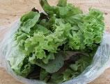 Bio-Salatmix 200g