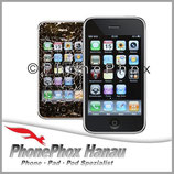 iPhone 3G 3GS Glas Reparatur