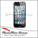 iPhone 5S Display Reparatur