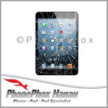 iPad Mini 3 Glas Reparatur