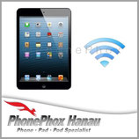 iPad Mini 3 Wireless Lan Reparatur