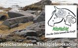 Speichelanalyse Therapieblockaden