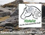 Speichelanalyse Mineralien