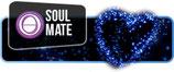 Soul Mate (2 Days)  $500