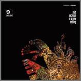 イン・ア・ニュー・セッティング 33rpm LP