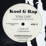 Kool G Rap – Foul Cats