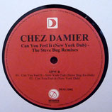 Chez Damier ‎– Can You Feel It (New York Dub) - The Steve Bug Remixes