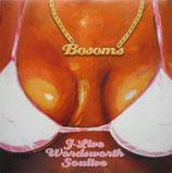 J-Live / Wordsworth / Soulive – Bosoms