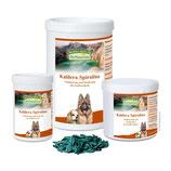 Spirella Mikroalgen-Mix ( 200 g )