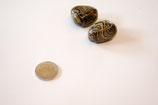 Trommelstein Stromatolith