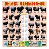徳之島闘牛カレンダー2021年版【税込み・代引き可能】