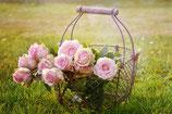 Glycéré de rose