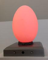 Licht - Ei