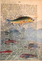 """""""LostPaper"""" - Fische I - Briefkarte (m. Umschlag)"""