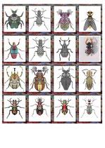 Käfer der Phantasie II