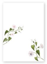Postkarte Nr. 14